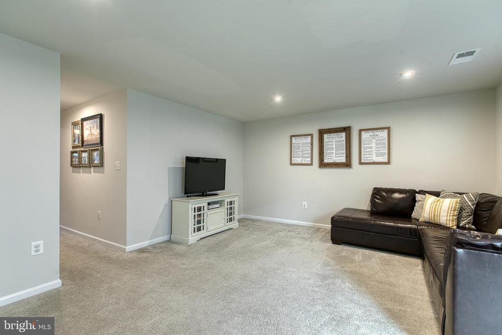 Family room on lower level of home - 211 LANDING DR, FREDERICKSBURG