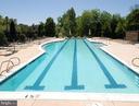 Sparkling Swimming Pool - 18348 FAIRWAY OAKS SQ, LEESBURG