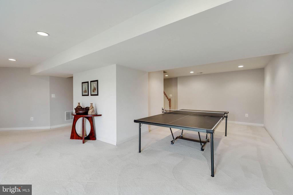 FINISHED RECREATION ROOM - 2728 JOHN MILLS RD, ADAMSTOWN