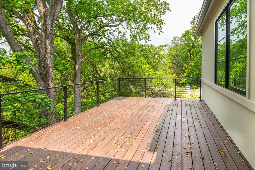 Deck off Master Suite - 3016 UNIVERSITY TER NW, WASHINGTON