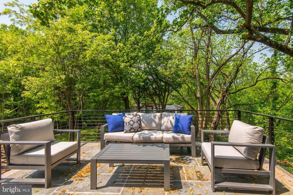 Terrace off Breakfast Room - 3016 UNIVERSITY TER NW, WASHINGTON