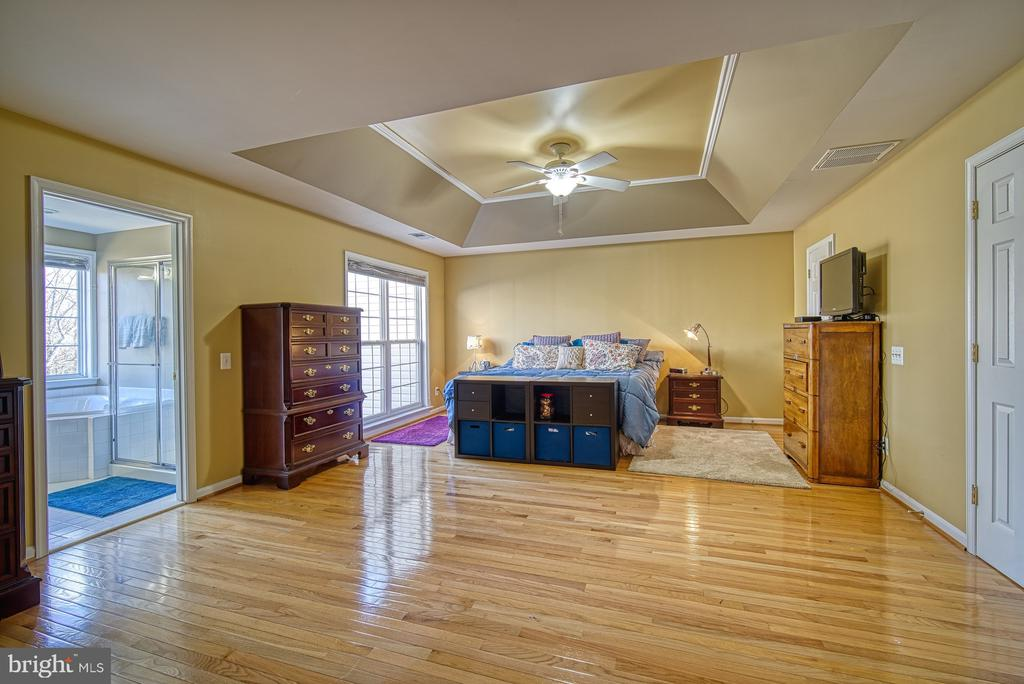 Huge Master Bedroom with Tray Ceiling - 22710 DEXTER HOUSE TER, ASHBURN