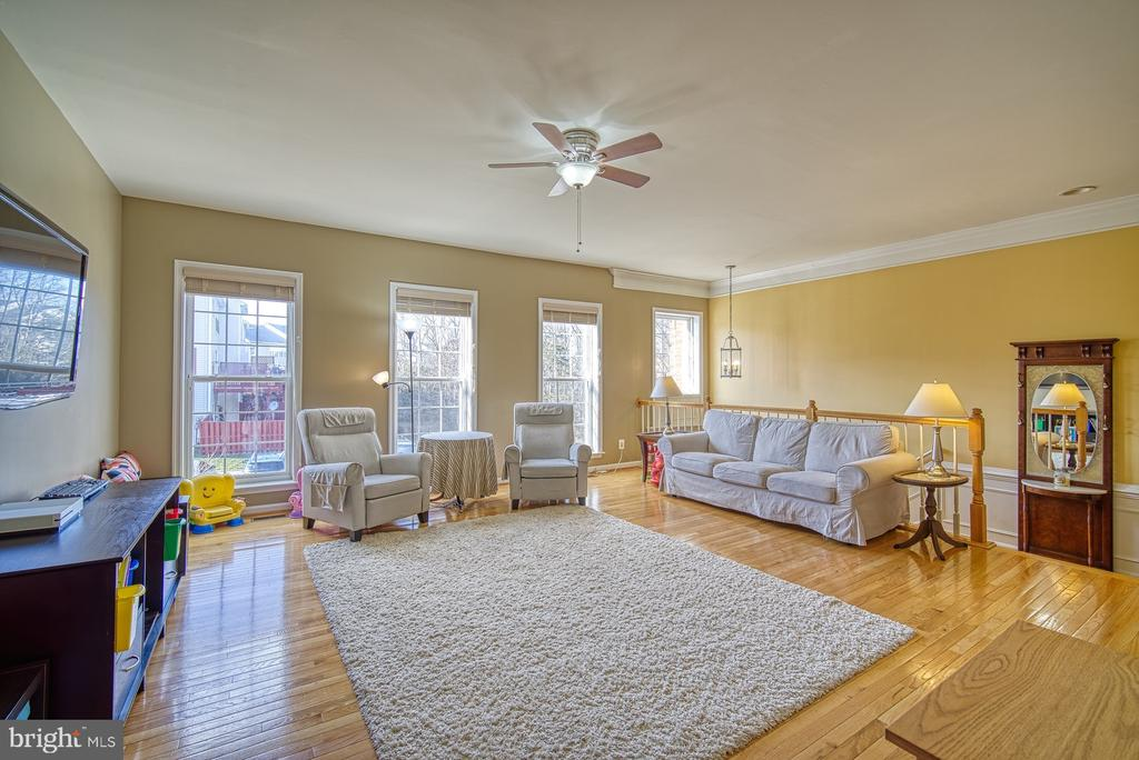 Light Filled Family Room - 22710 DEXTER HOUSE TER, ASHBURN