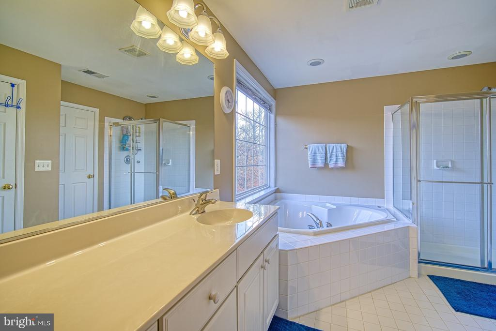 Master Bathroom has Soaking Tub & Separate Shower - 22710 DEXTER HOUSE TER, ASHBURN