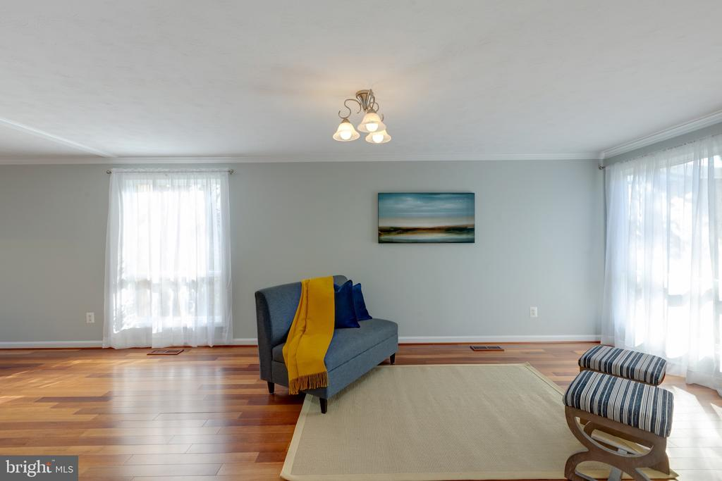 LIving Room - 4467 ELAN CT, ANNANDALE