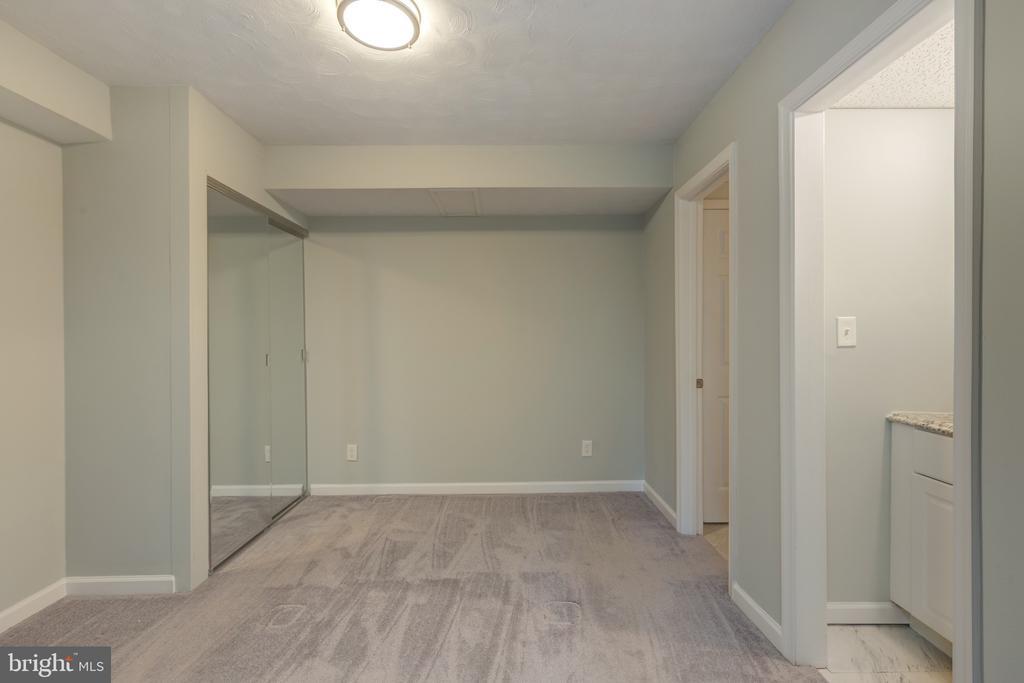 Bonus Room #1 in basement - 4467 ELAN CT, ANNANDALE