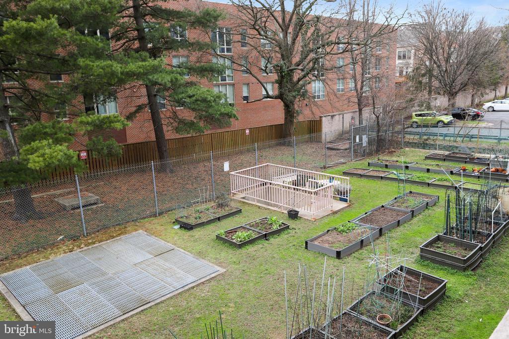 Community garden. - 4141 N HENDERSON RD #1011, ARLINGTON