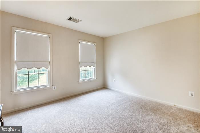 2nd Bedroom - 13906 LEETON CIR, CHANTILLY