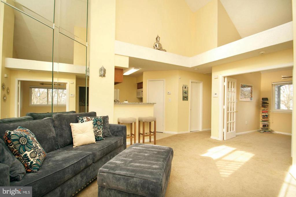 Sun-Filled Living Room; Vaulted Ceilings - 10815 AMHERST AVE #C, SILVER SPRING