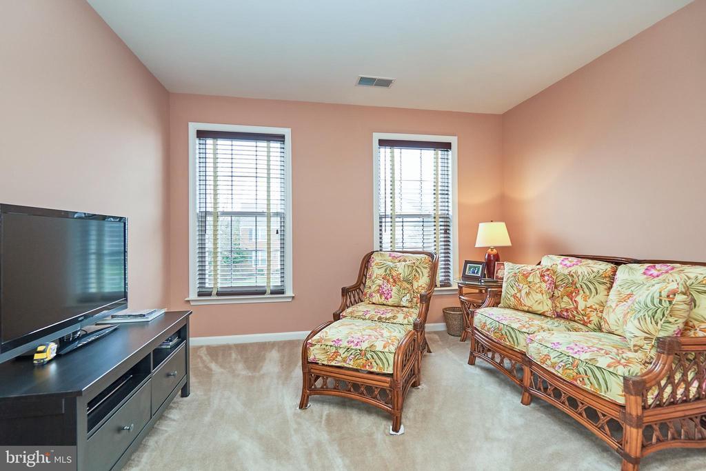 Secondary bedroom upper level - 5947 TUMBLE CREEK CT, HAYMARKET