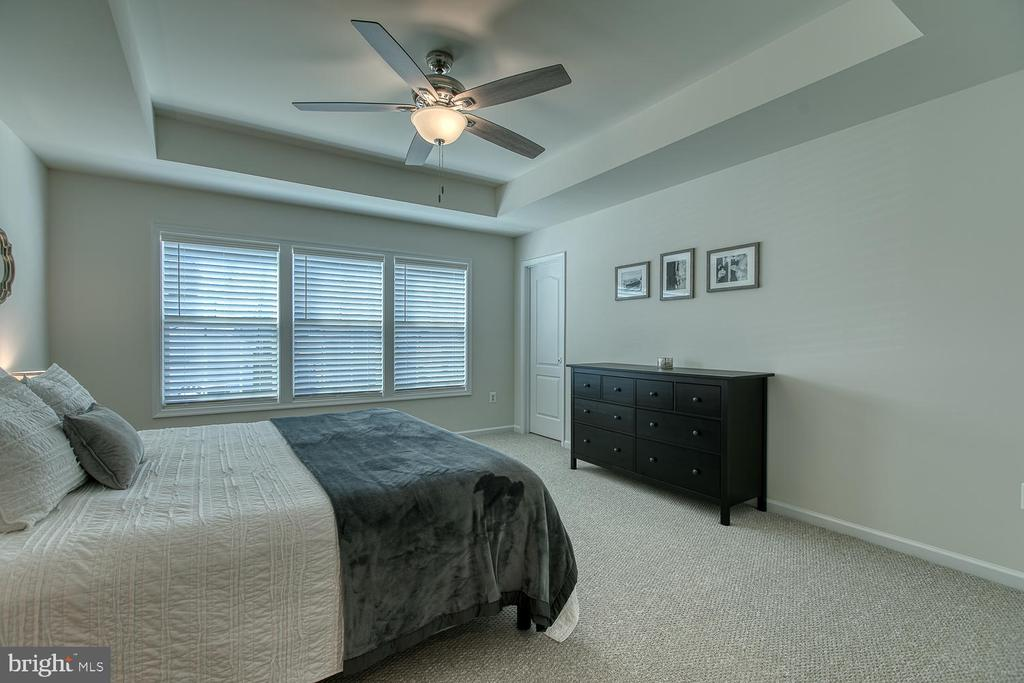 Tray ceiling and ceiling fan in Master Bedroom - 332 BOXELDER DR, STAFFORD