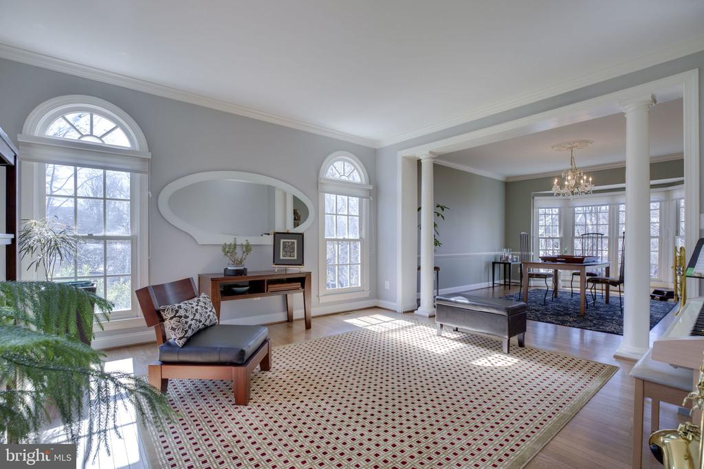 Living Room-So Many Windows to let the Sun Shine - 12110 WALNUT BRANCH RD, RESTON
