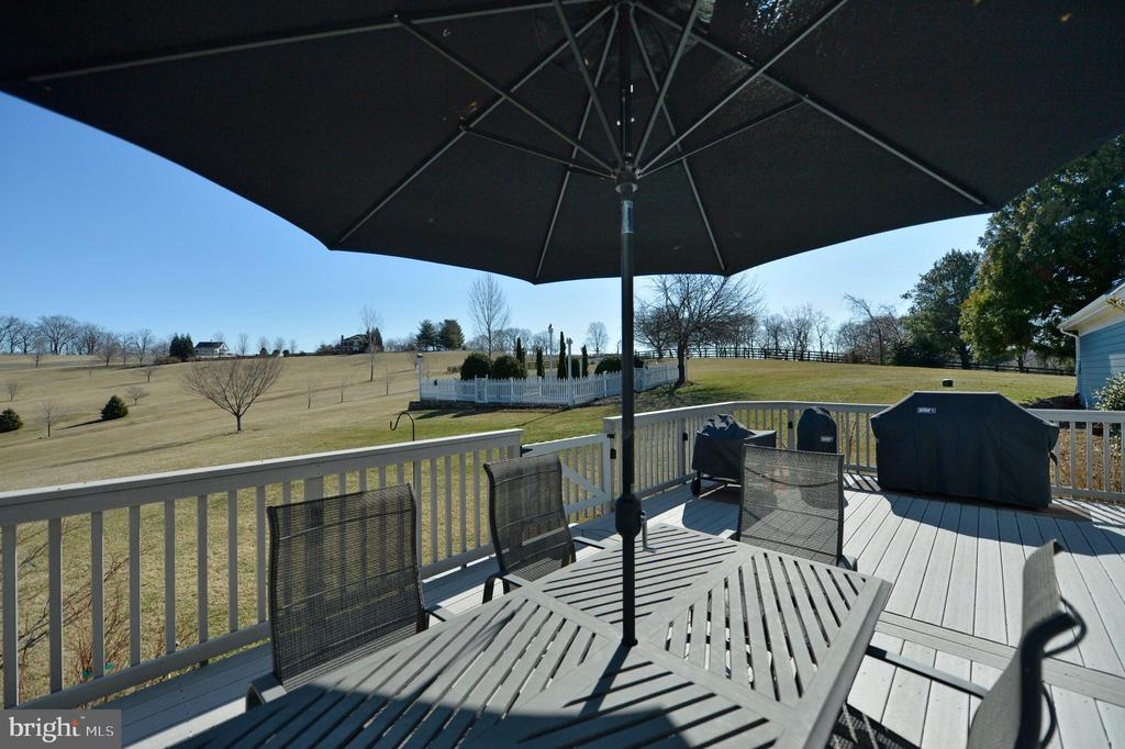 Wonderful composite deck - 16080 GOLD CUP LN, PAEONIAN SPRINGS
