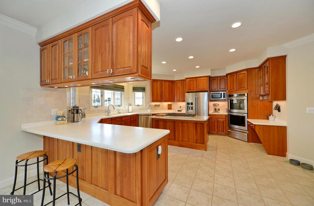 Gourmet kitchen with breakfast bar - 16080 GOLD CUP LN, PAEONIAN SPRINGS