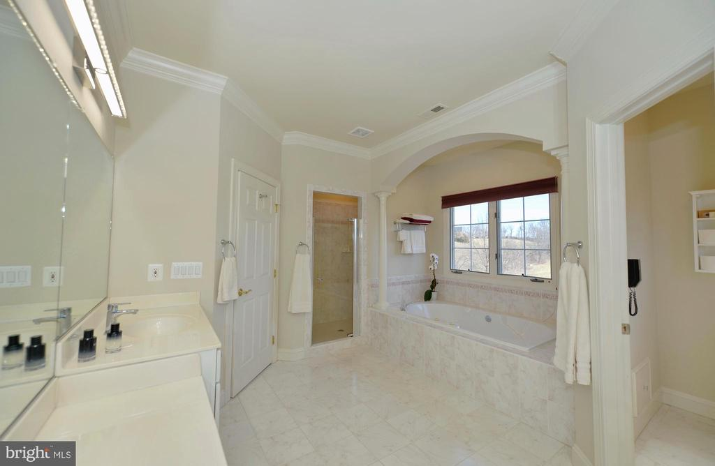 Master bath with garden tub &separate shower - 16080 GOLD CUP LN, PAEONIAN SPRINGS