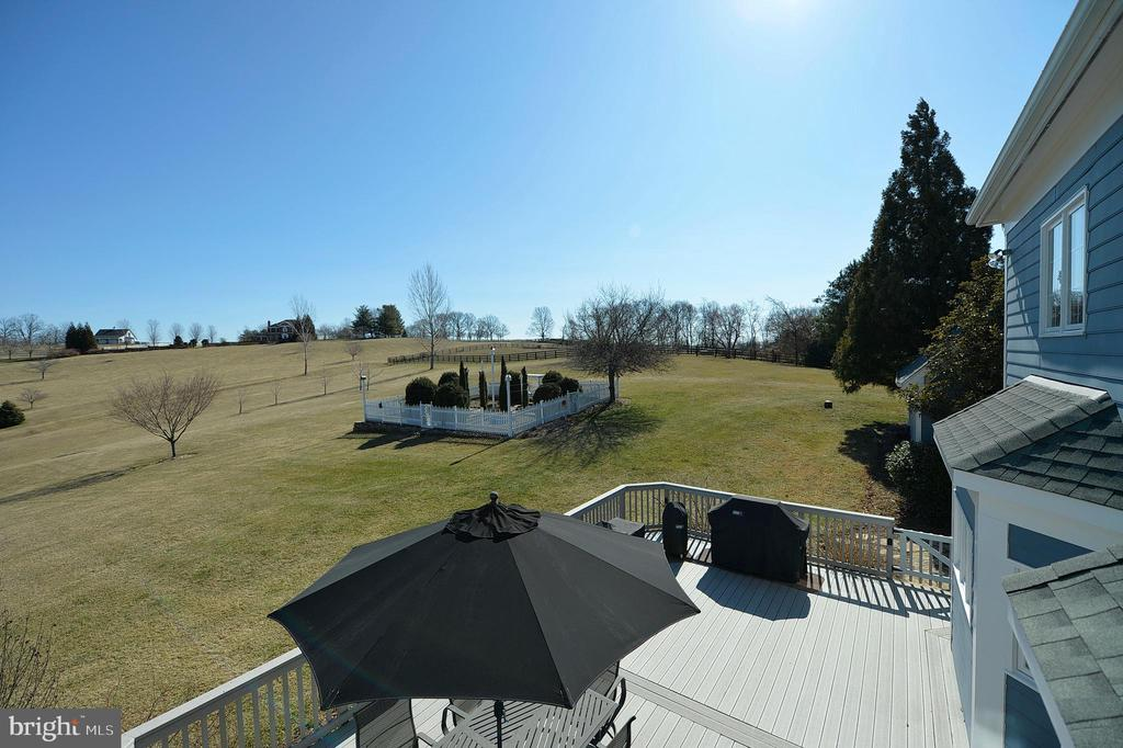 Master bedroom view - 16080 GOLD CUP LN, PAEONIAN SPRINGS