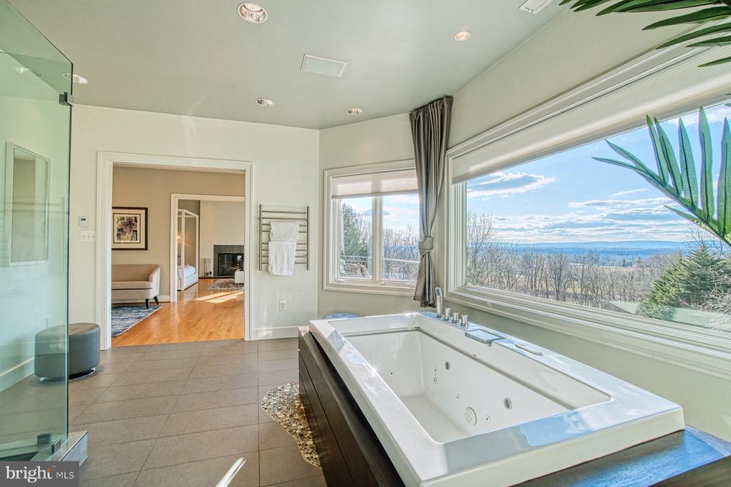 Master bathroom with jetted tub & shower & views!! - 40310 HURLEY LN, PAEONIAN SPRINGS