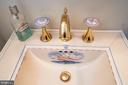 KHOLER Artist Series Sink and Knobs - 4921 E CHALK POINT RD, WEST RIVER