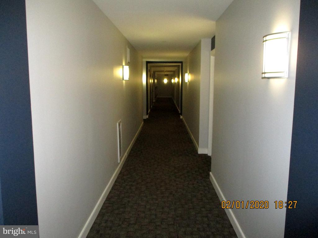 Bright and well maintained hallway - 555 MASSACHUSETTS AVE NW #202, WASHINGTON