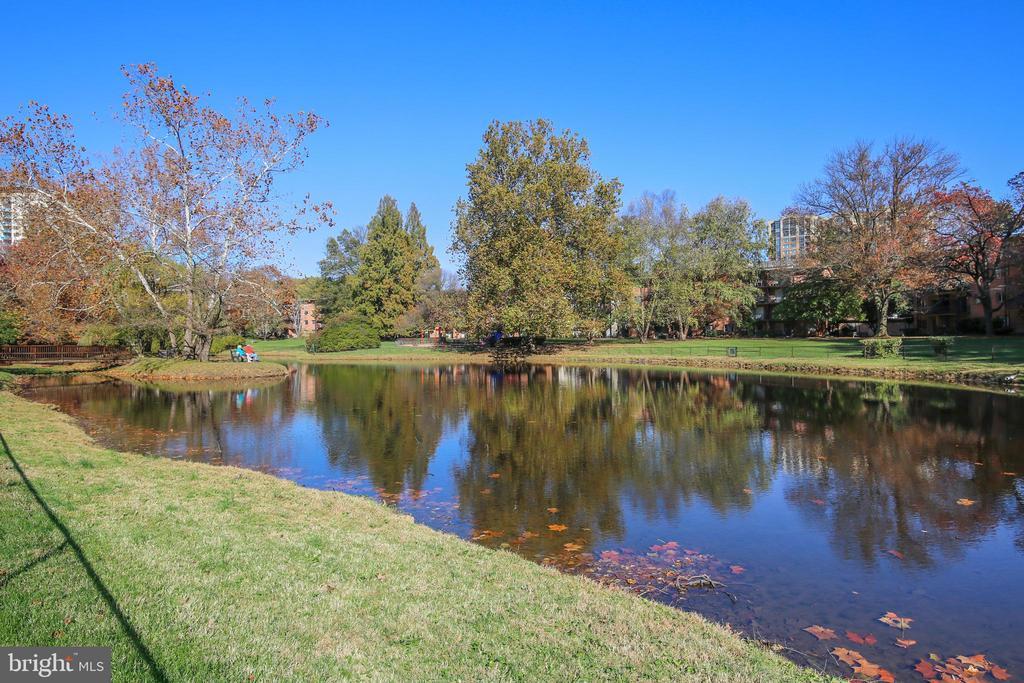 Grosvenor Pond - 10204 ROCKVILLE PIKE #102, ROCKVILLE