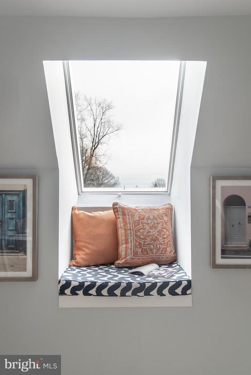 Guest Bedroom #3 w 2 skylights, storage and bath - 1015 D ST NE #2, WASHINGTON