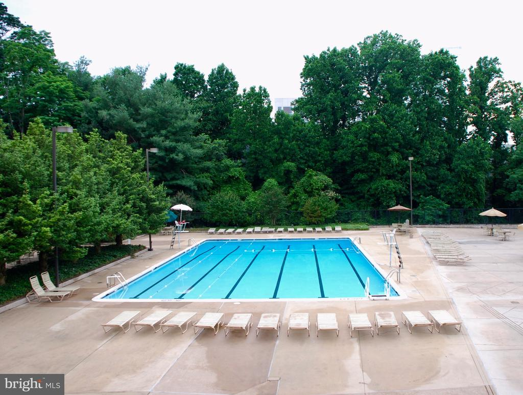 Largest of The Three Pools - 1808 OLD MEADOW RD #1011, MCLEAN