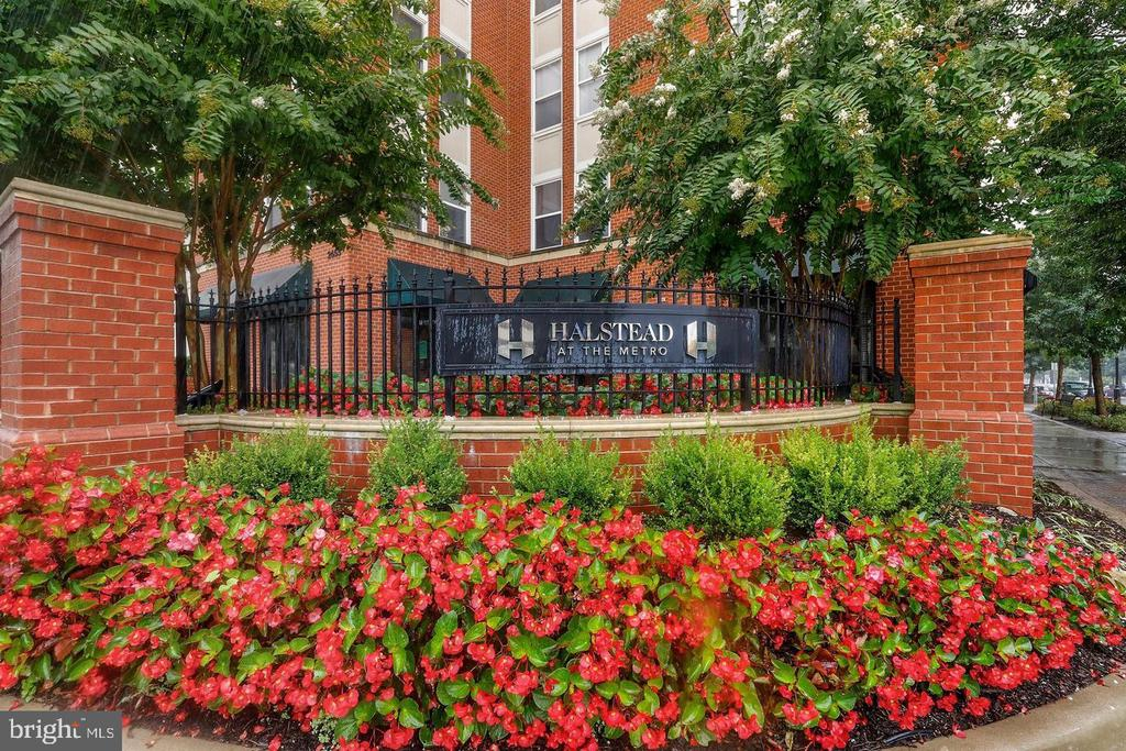 First floor unit with pool view-close to elevator - 2655 PROSPERITY AVE #119, FAIRFAX