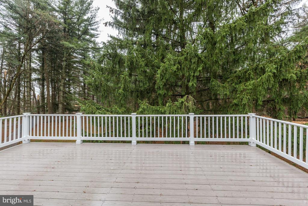 Large Deck - 12901 JESSE SMITH RD, MOUNT AIRY