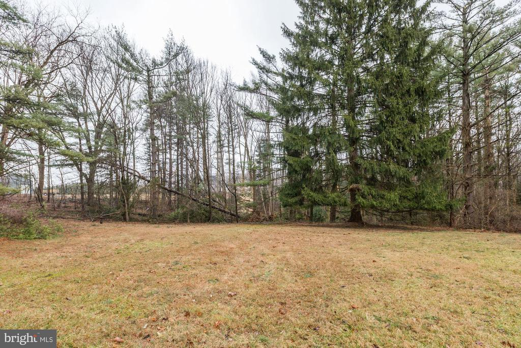 Quiet open setting surrounded by woods - 12901 JESSE SMITH RD, MOUNT AIRY