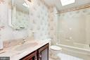 Hall Bath with Skylight - 12901 JESSE SMITH RD, MOUNT AIRY