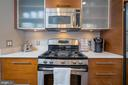 STAINLESS APPLIANCES AND QUARTZ COUNTERS - 12025 NEW DOMINION PKWY #504, RESTON