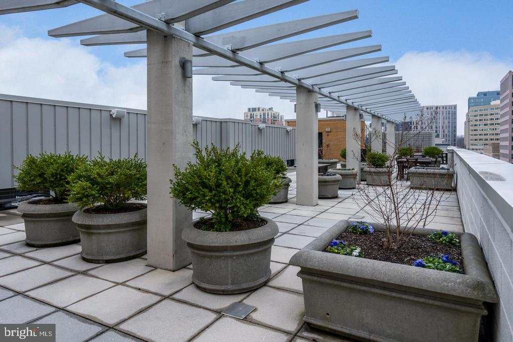ROOF-TOP TERRACE WITH BBQ GRILL AVAILABLE - 12025 NEW DOMINION PKWY #504, RESTON