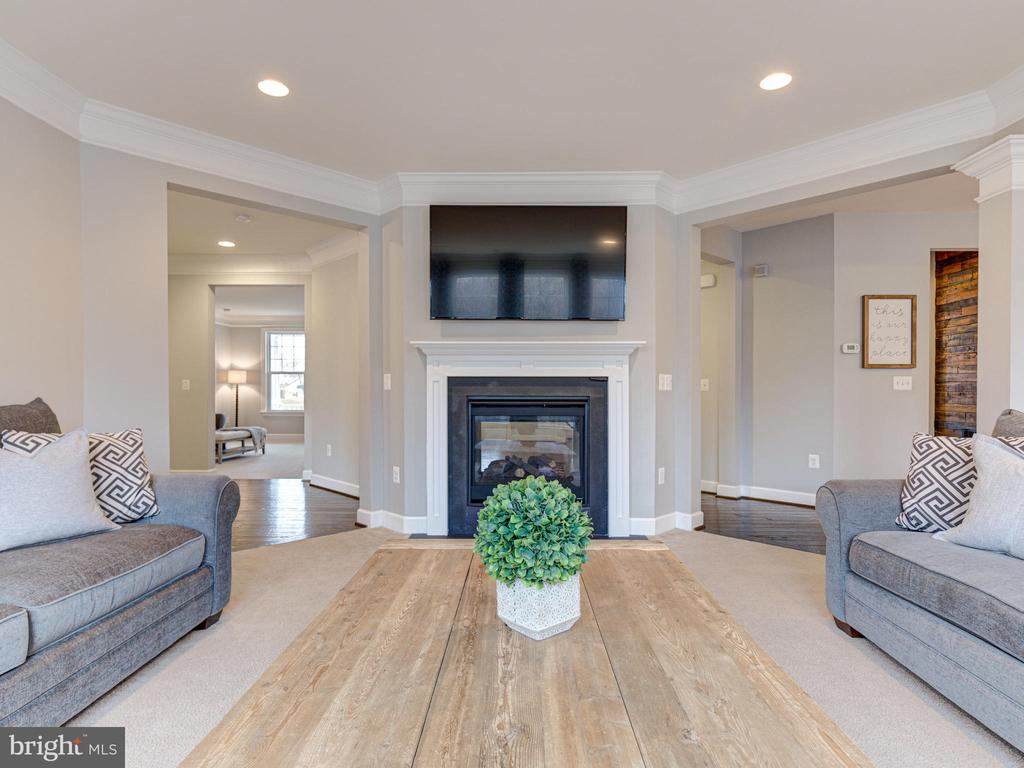Double Sided Gas Fireplace - 41532 BLAISE HAMLET LN, LEESBURG