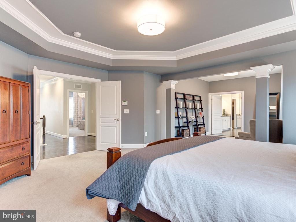 Beautiful Tray Ceiling - 41532 BLAISE HAMLET LN, LEESBURG