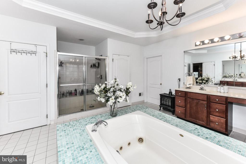Master Bath - 15521 BANKFIELD DR, WATERFORD