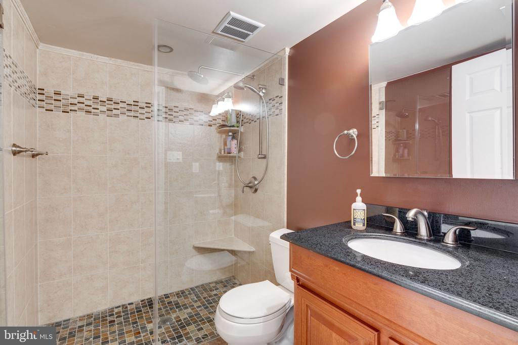 Lower level full bath - 6253 RATHLIN DR, SPRINGFIELD