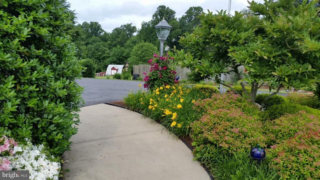 Sidewalk to the driveway in the Spring - 2407 FLAG MARSH RD, MOUNT AIRY