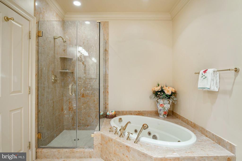 Bath - 896 ALVERMAR RIDGE DR, MCLEAN