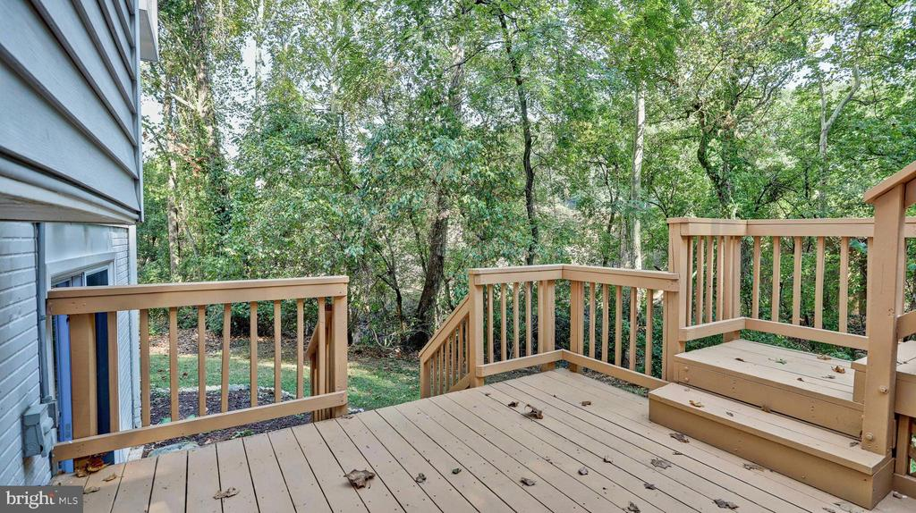 Tree lined view... - 7504 GLENNON DR, BETHESDA
