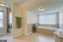 Master bath w/ walk-in shower & soaking tub - 118 NORTHAMPTON BLVD, STAFFORD