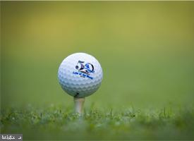 Golf - 36-Hole PGA  Course - 117 GREEN ST, LOCUST GROVE