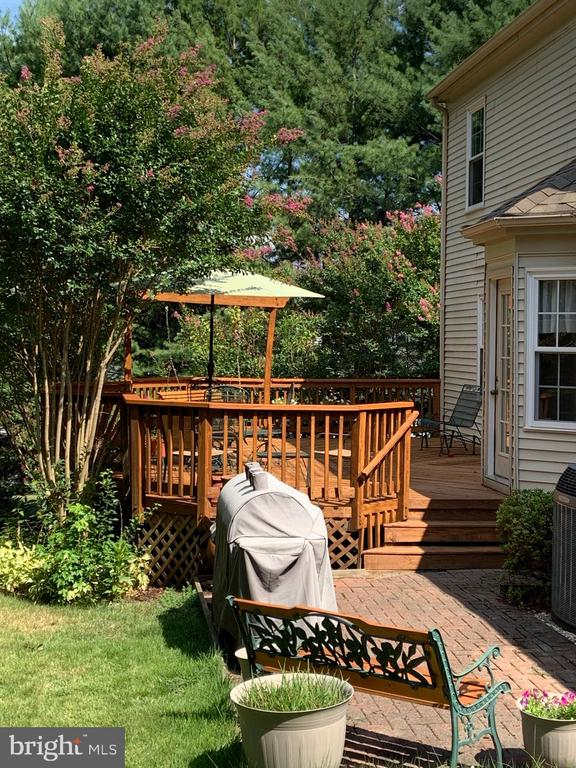 Backyard - 265 GREENSPRING DR, STAFFORD