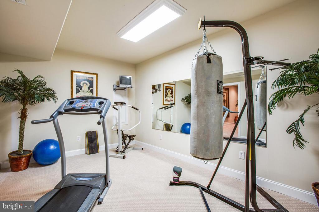 Other basement room - 11400 STONEWALL JACKSON DR, SPOTSYLVANIA