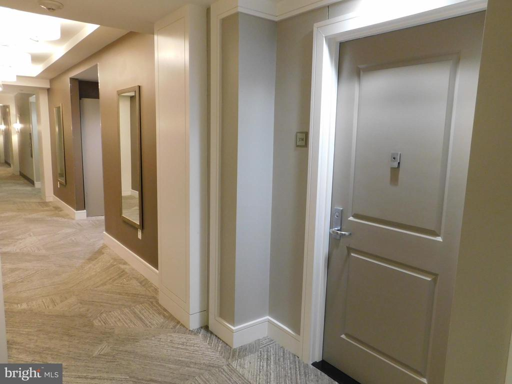 View from Front Door to Elevators(Left Opening) - 11700 OLD GEORGETOWN RD #314, NORTH BETHESDA