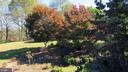 Landscaping detail - 110 LINDEN LN, FLINT HILL