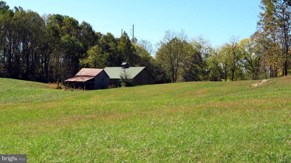 Pasture view of Barns - 110 LINDEN LN, FLINT HILL