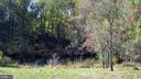 Pond - 110 LINDEN LN, FLINT HILL