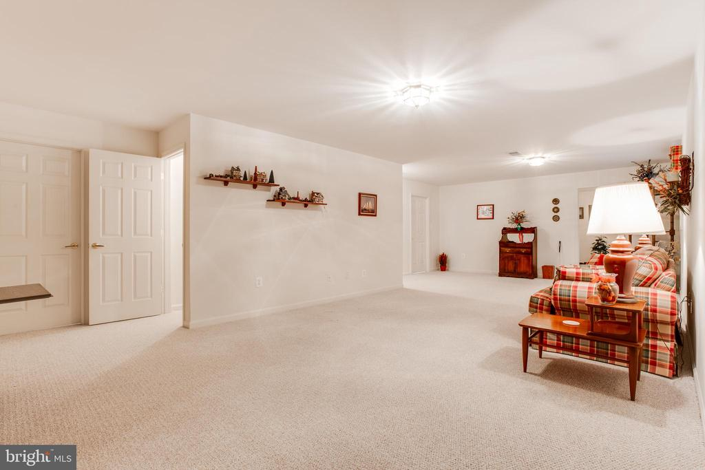 Basement Recreation Room - 13533 RYTON RIDGE LN, GAINESVILLE