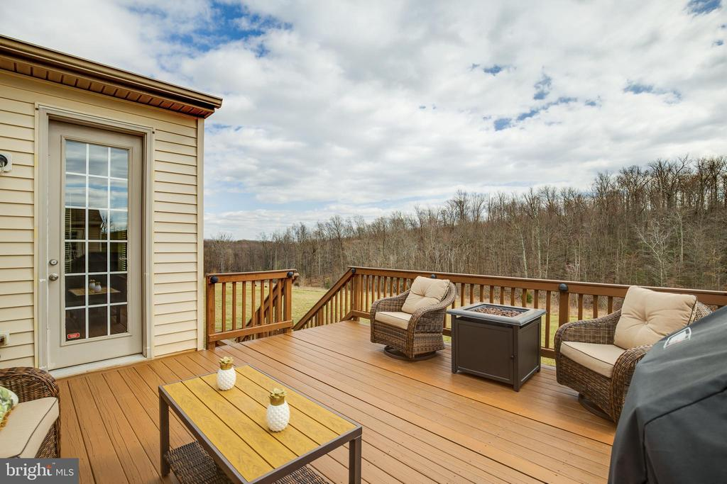 Deck & View of Tree - 18751 PIER TRAIL DR, TRIANGLE