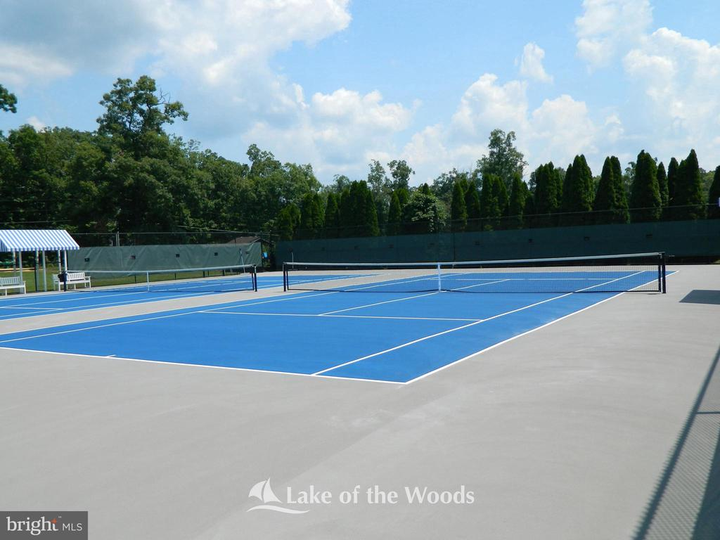 Pickle ball and Tennis courts. - 509 MT PLEASANT DR, LOCUST GROVE